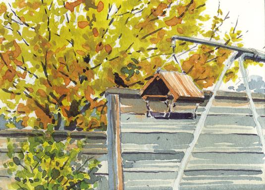 Watercolour sketch of Autumn Colours in the garden.