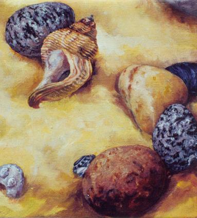 'Shell'