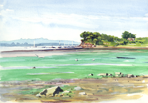 'Strolling along the Exe Estuary'