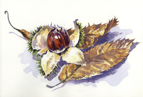 'Sweet Chestnuts'