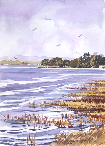 Watercolour sketch - 'Across the River Clyst'