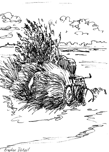Pen sketch of a bike leaning against some sand dunes.