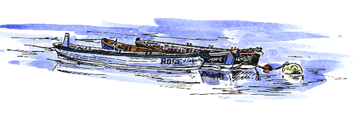 watercolour and pen sketch of gigs moored together.
