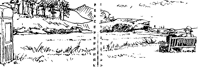 Pen sketch 'Looking across the Otter Estuary'