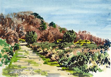 'Pebblebed Heathland'