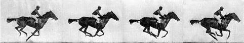 Eadweard Muybridge's horse galloping photo's