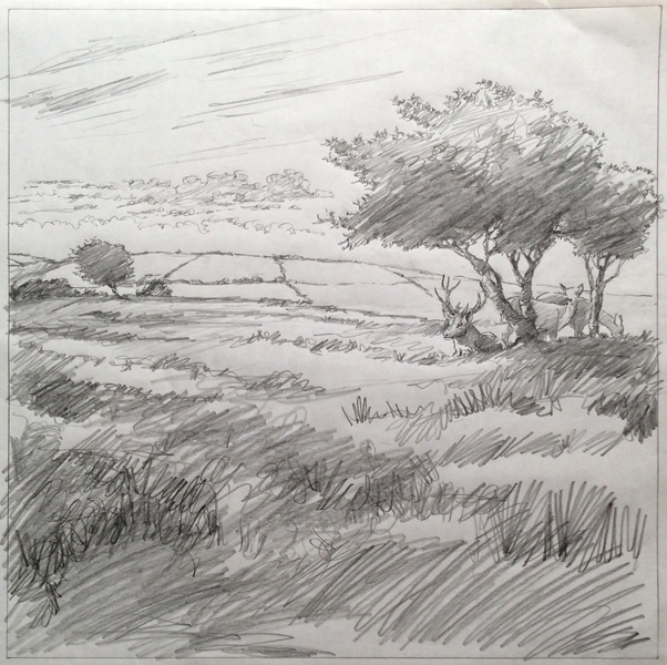 Pencil drawing looking across Exmoor with Red Deer and windswept trees.