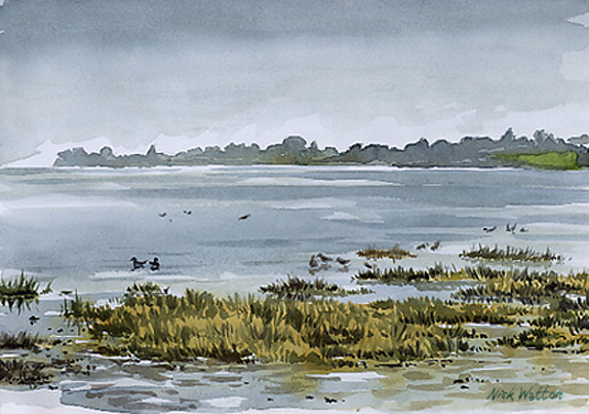 Watercolour sketch on the Exe Estuary, High tide, birds & rain.