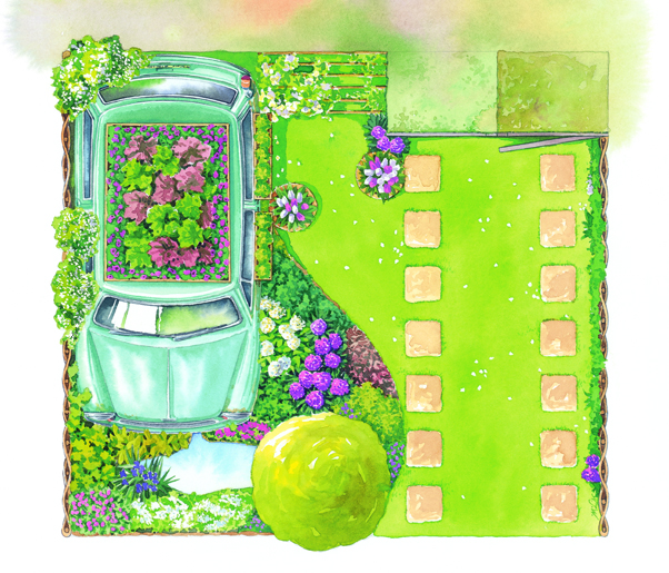 Watercolour plan of garden with plants growing around and in an old Mini.