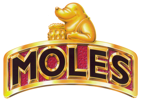 Airbrushed artwork of a pub pump clip with the lettering 'Moles' with a mole sat on top.