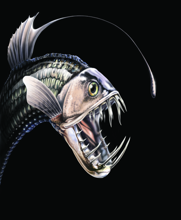 Digital artwork of a Viperfish with it's mouth wide open.